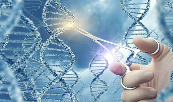 Génterápia – a 21. század gyógymódja
