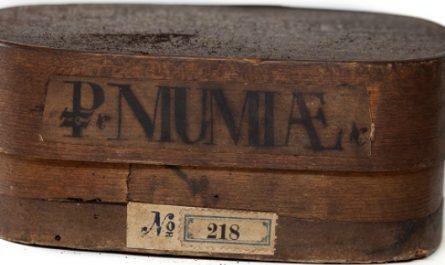 Múmiapor