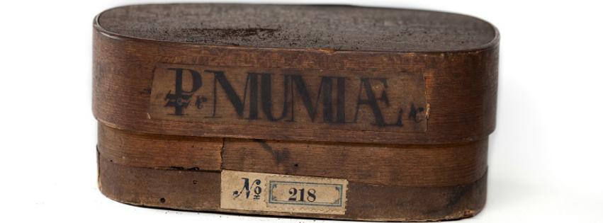 Múmiából gyógyszer? Pulvis Mumiae, azaz a múmiapor